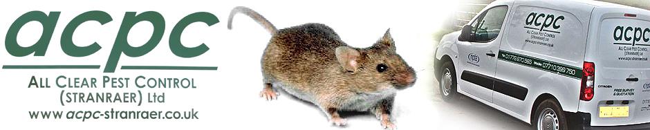 banner-rat