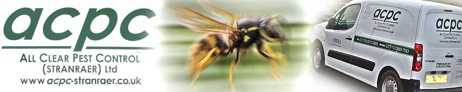 banner-wasp